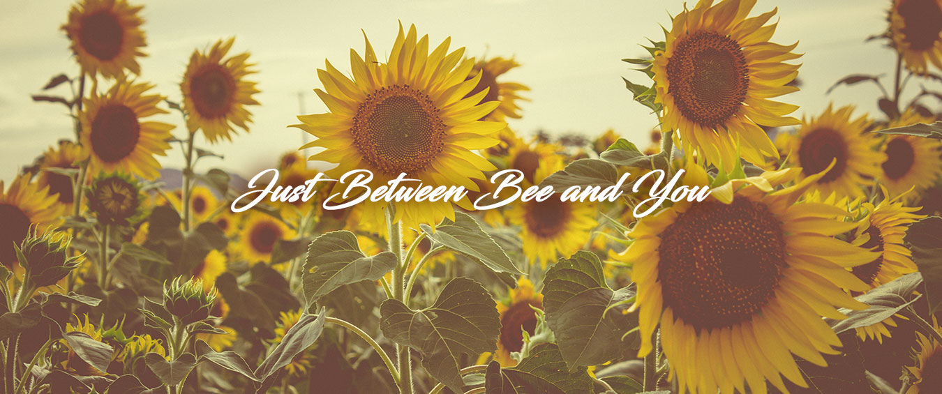 Just Between Bee and You